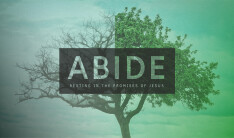 Abide: resting in the promises of Jesus
